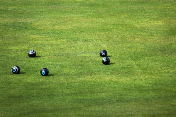 Black Lawn balls on green lawn